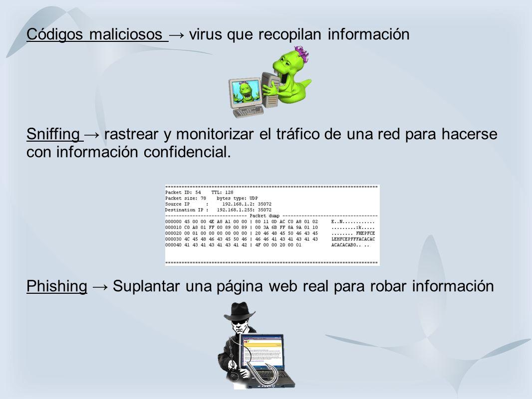 Códigos maliciosos → virus que recopilan información