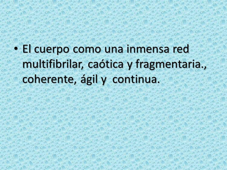 El cuerpo como una inmensa red multifibrilar, caótica y fragmentaria
