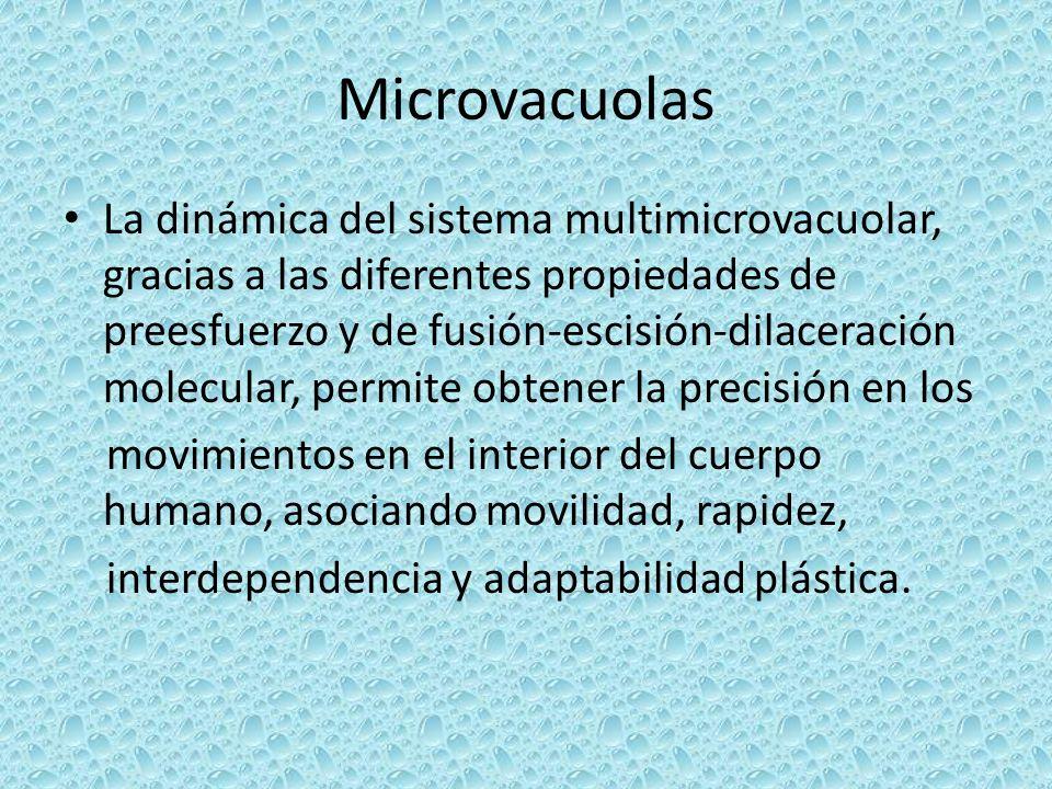 Microvacuolas