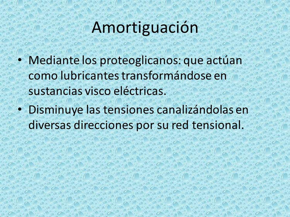 Amortiguación Mediante los proteoglicanos: que actúan como lubricantes transformándose en sustancias visco eléctricas.