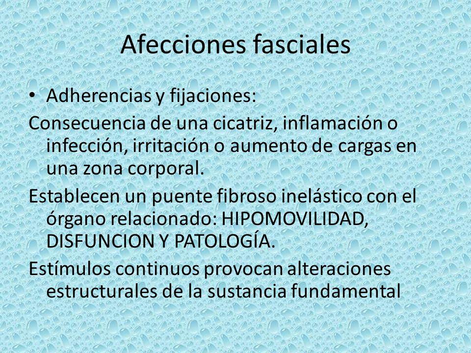 Afecciones fasciales Adherencias y fijaciones: