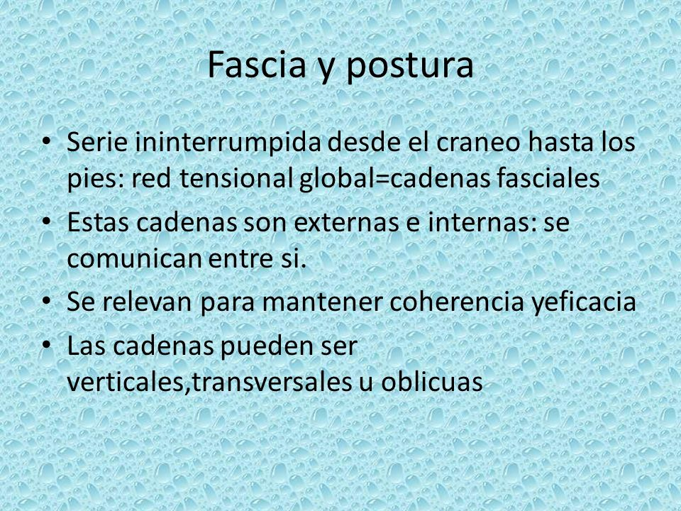 Fascia y postura Serie ininterrumpida desde el craneo hasta los pies: red tensional global=cadenas fasciales.