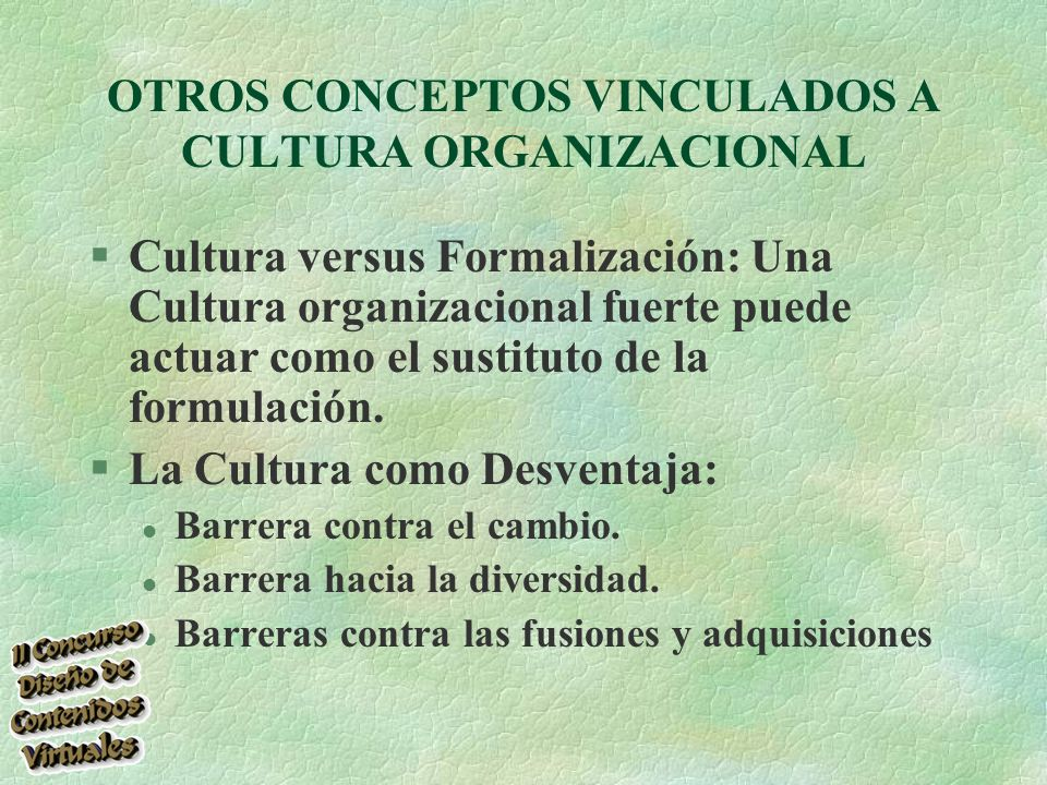 OTROS CONCEPTOS VINCULADOS A CULTURA ORGANIZACIONAL