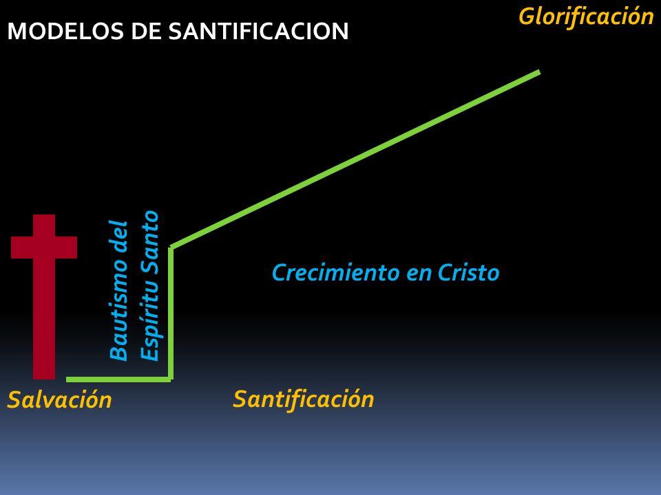 Glorificación MODELOS DE SANTIFICACION. Bautismo del Espíritu Santo. Crecimiento en Cristo. Salvación.
