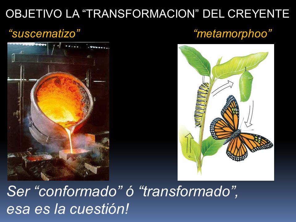 Ser conformado ó transformado , esa es la cuestión!