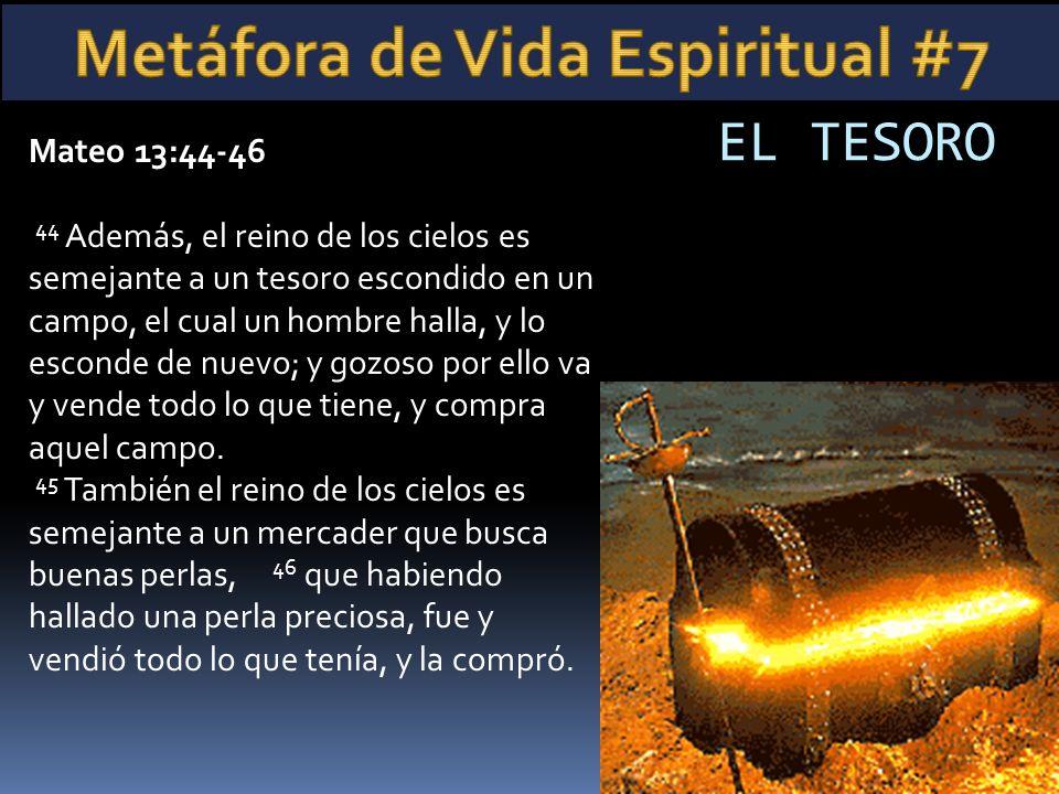 Metáfora de Vida Espiritual #7