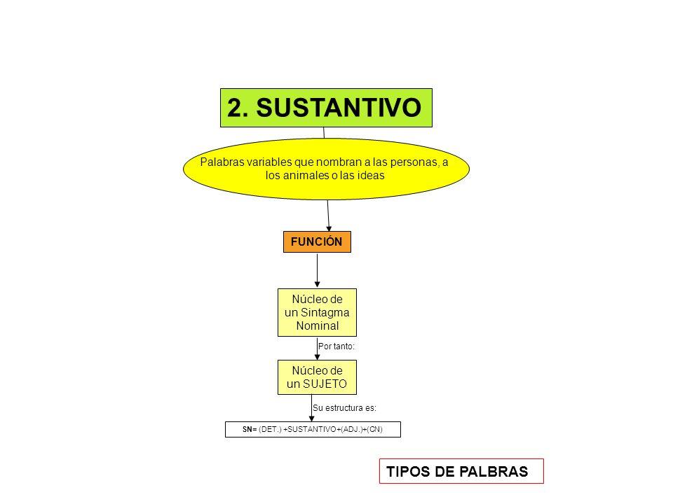 2. SUSTANTIVO TIPOS DE PALBRAS