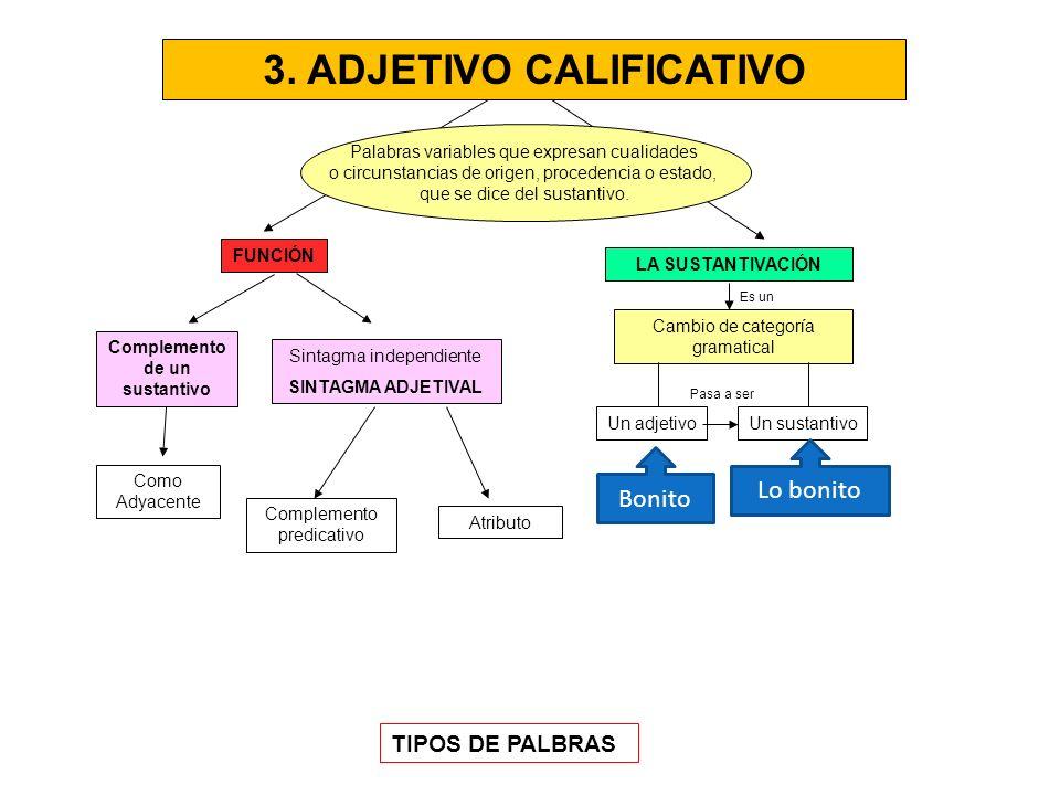 3. ADJETIVO CALIFICATIVO Complemento de un sustantivo