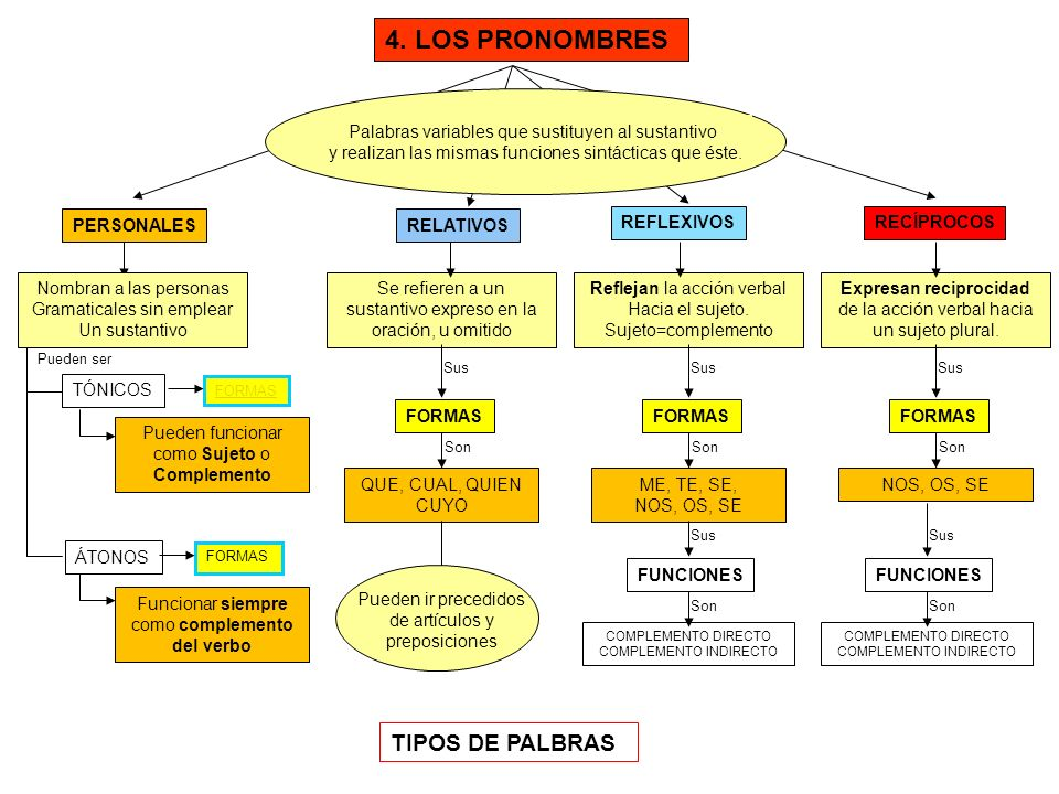 4. LOS PRONOMBRES TIPOS DE PALBRAS