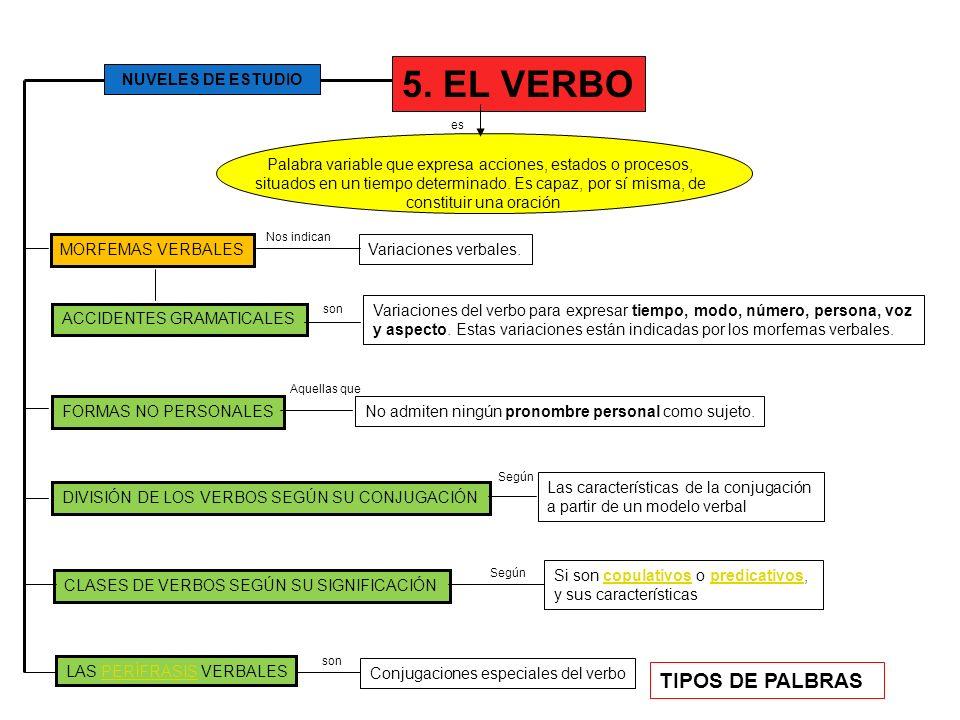 5. EL VERBO TIPOS DE PALBRAS NUVELES DE ESTUDIO