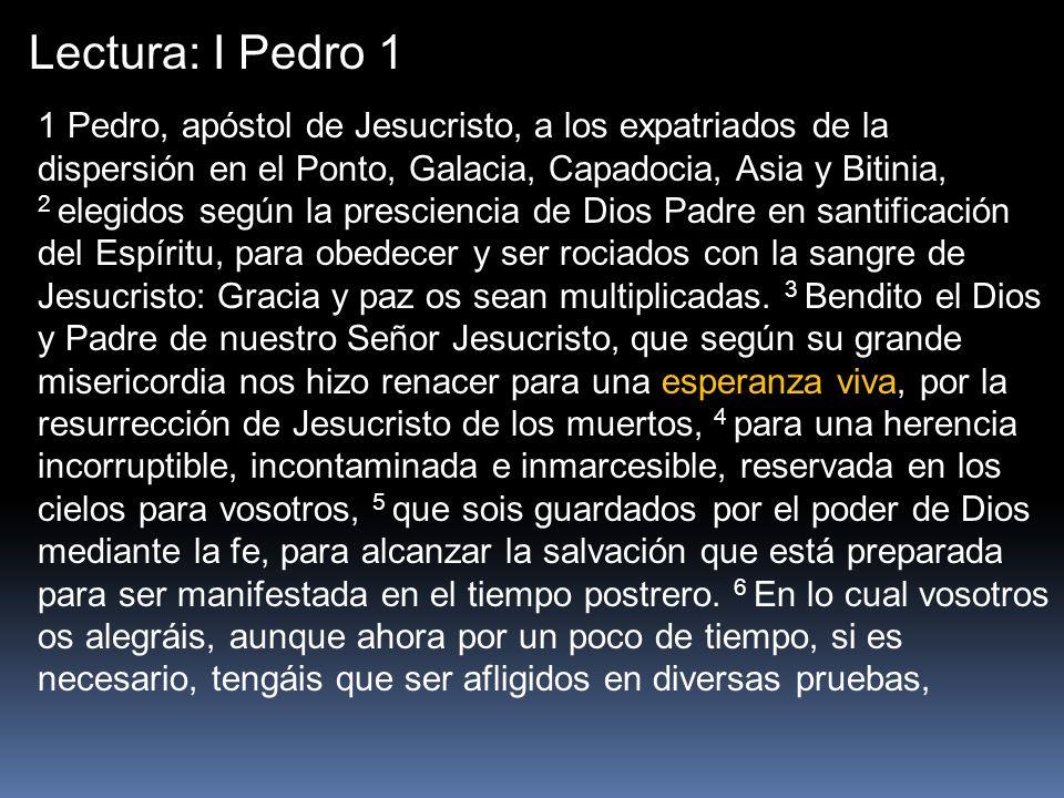 Lectura: I Pedro 1 1 Pedro, apóstol de Jesucristo, a los expatriados de la dispersión en el Ponto, Galacia, Capadocia, Asia y Bitinia,