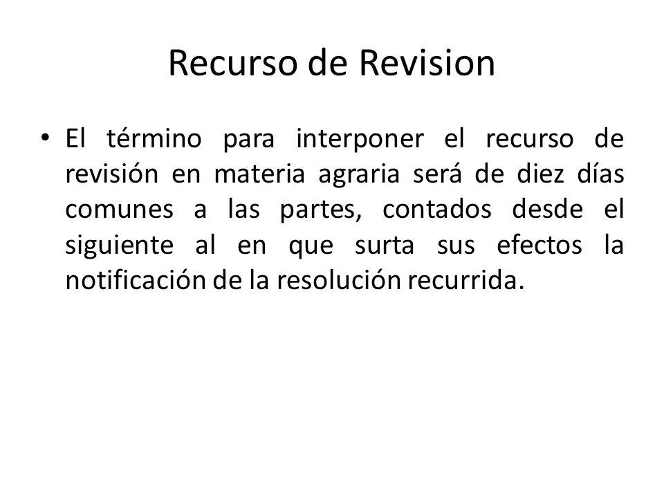 Recurso de Revision