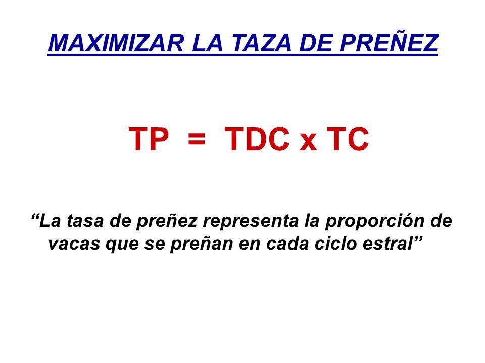 MAXIMIZAR LA TAZA DE PREÑEZ