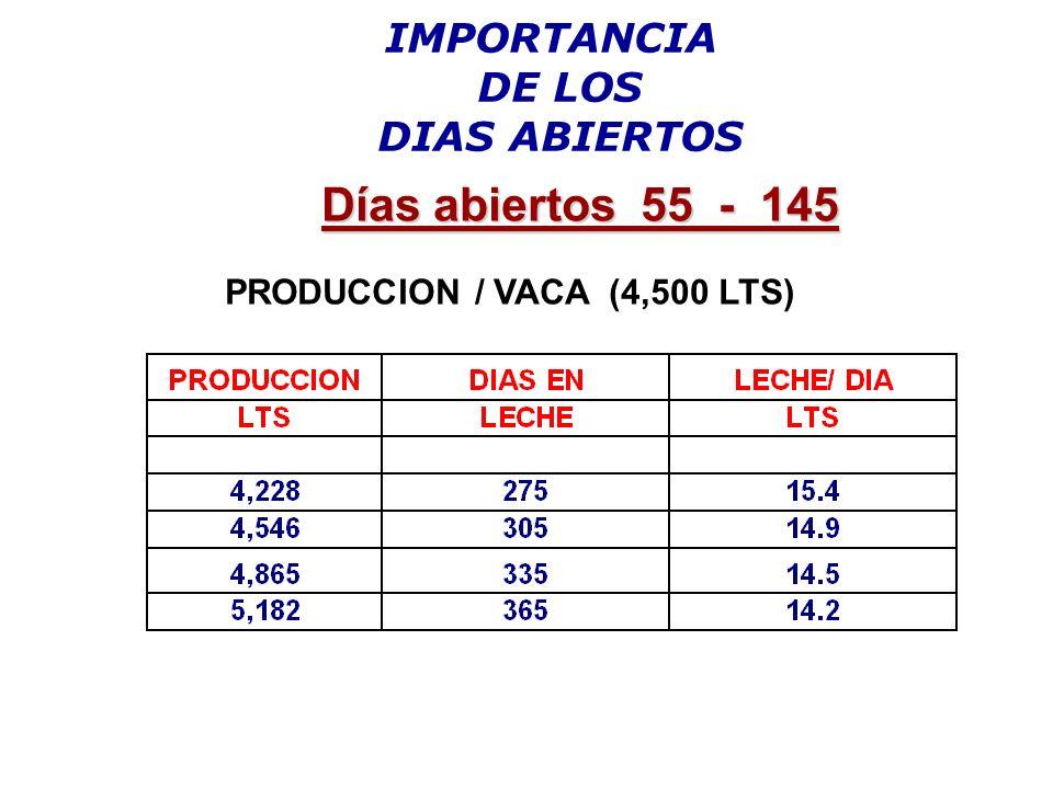PRODUCCION / VACA (4,500 LTS)