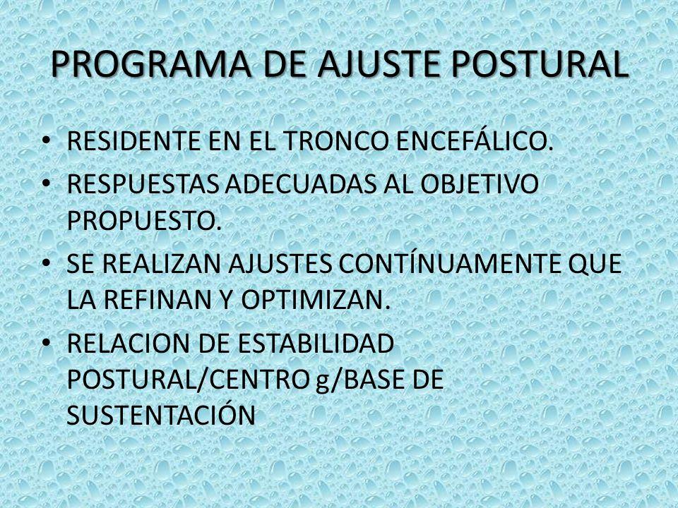 PROGRAMA DE AJUSTE POSTURAL