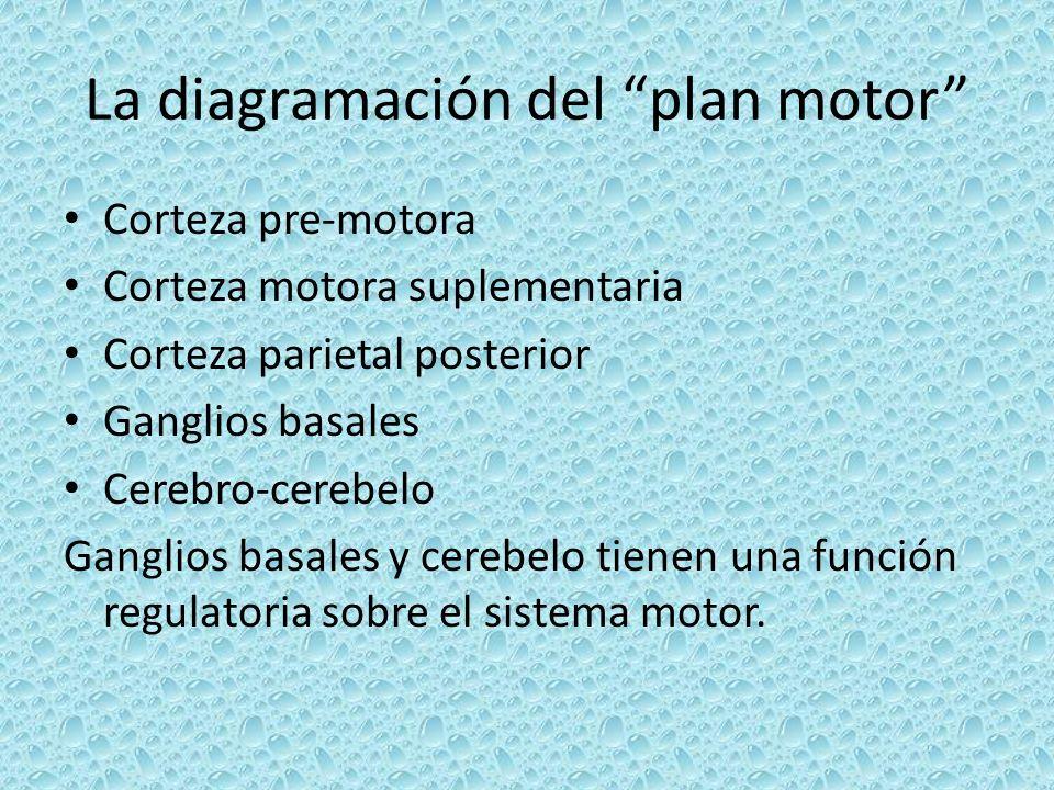 La diagramación del plan motor