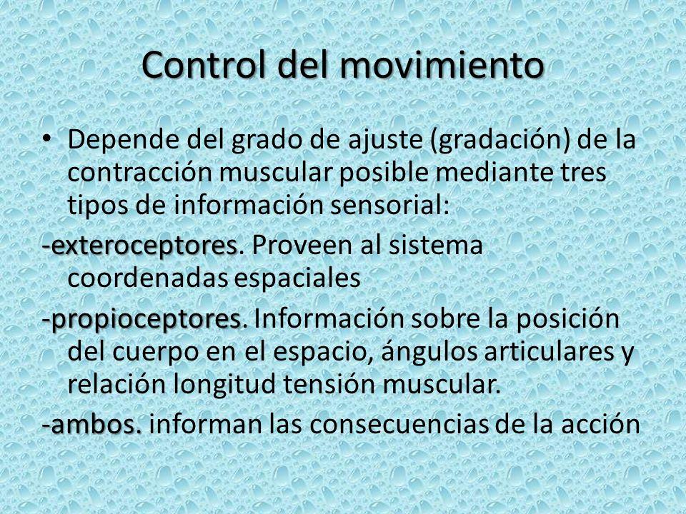 Control del movimiento