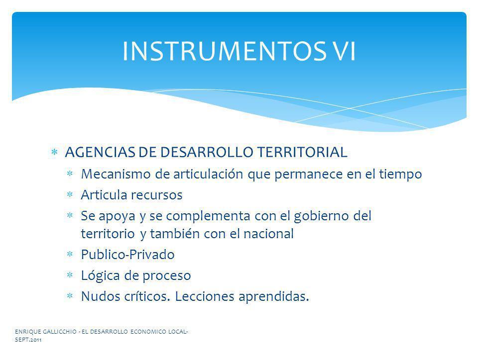 INSTRUMENTOS VI AGENCIAS DE DESARROLLO TERRITORIAL