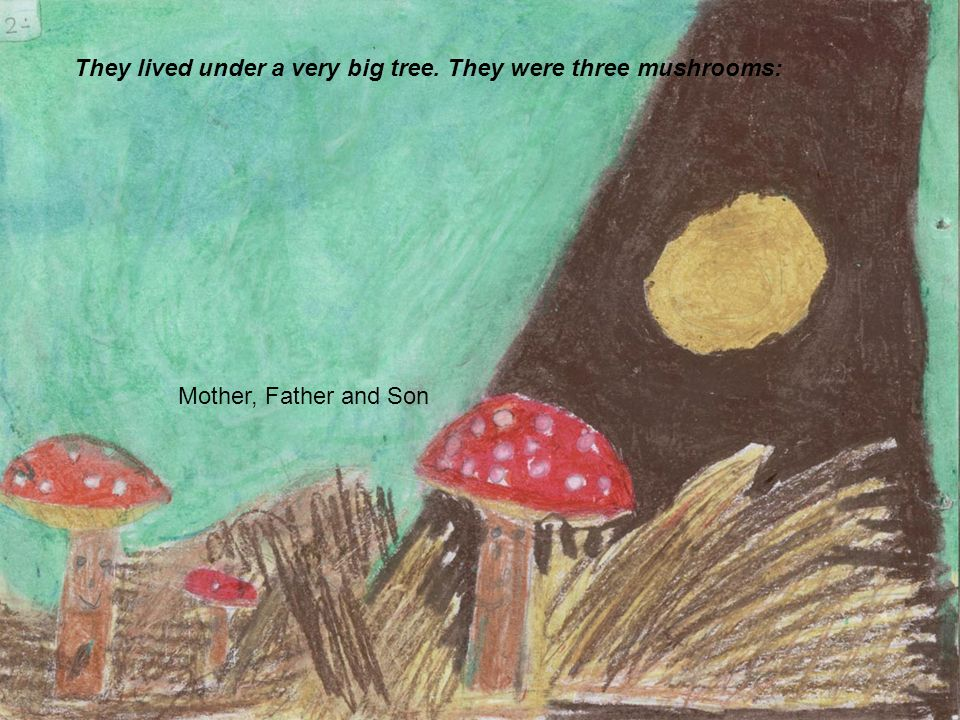 They lived under a very big tree. They were three mushrooms: