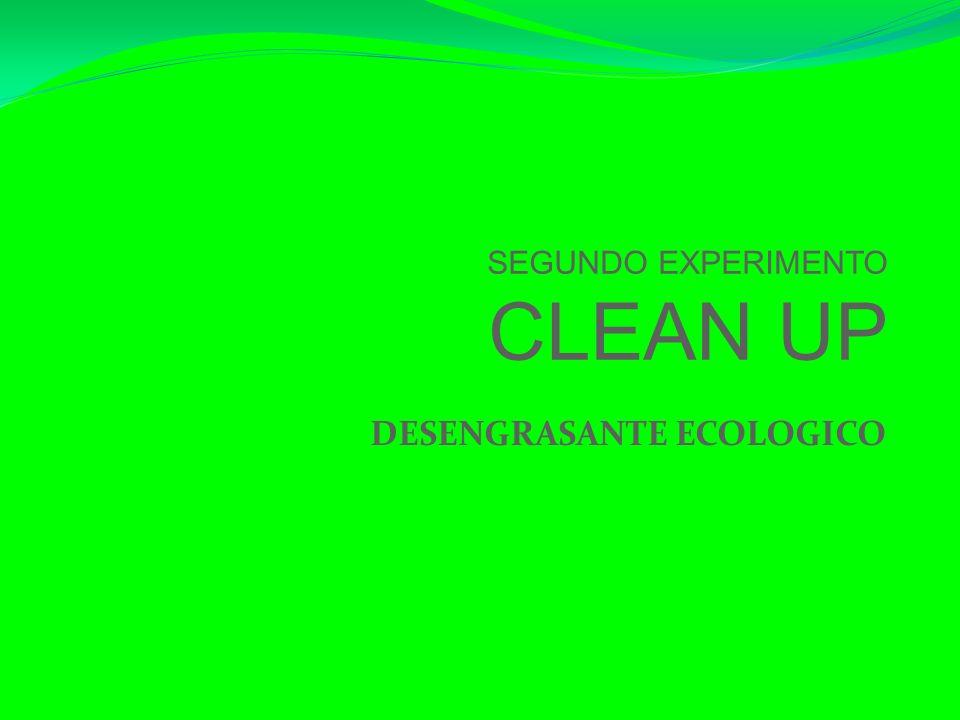 SEGUNDO EXPERIMENTO CLEAN UP