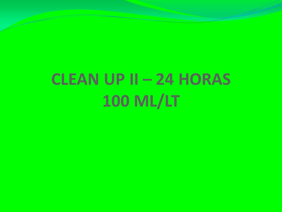 CLEAN UP II – 24 HORAS 100 ML/LT