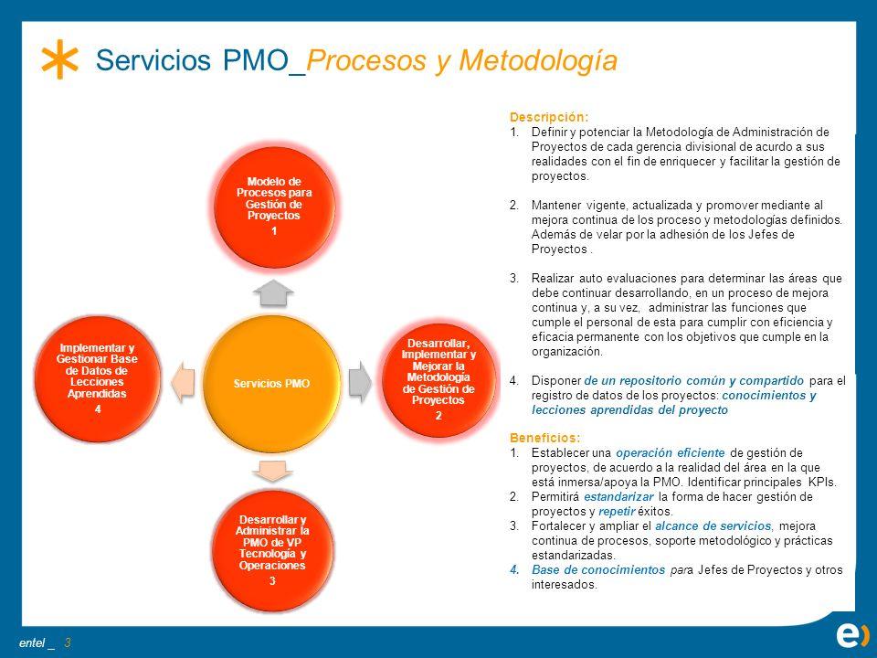 Servicios PMO_Procesos y Metodología