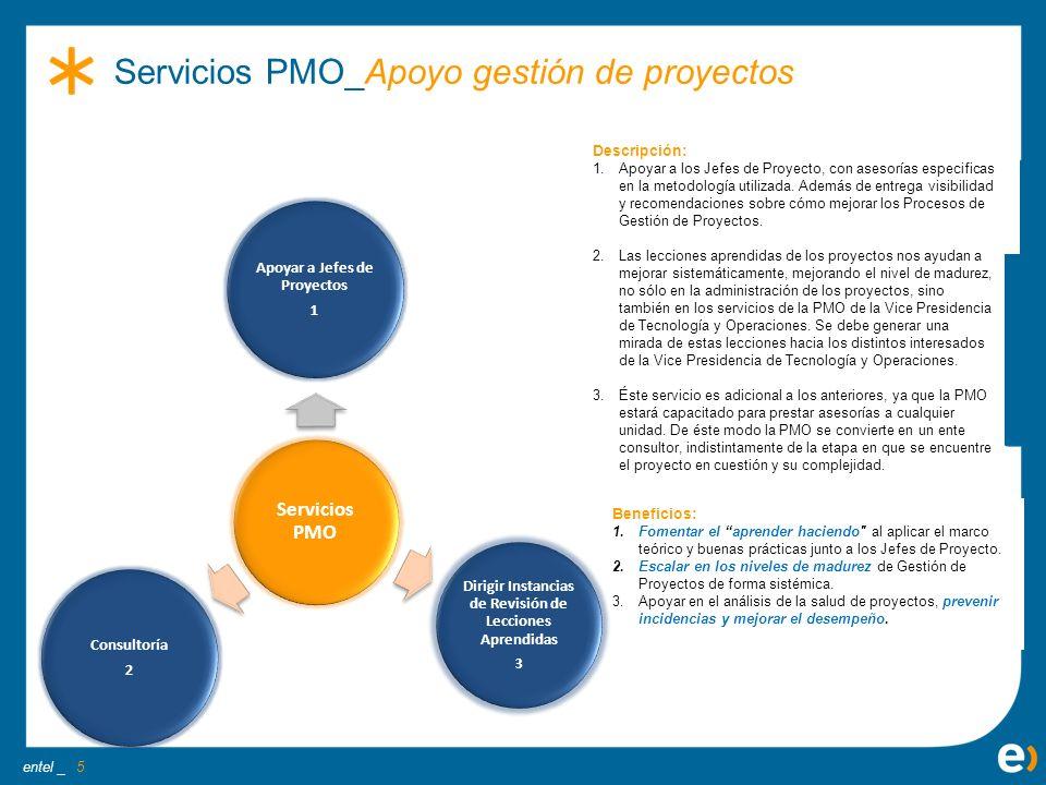 Servicios PMO_Apoyo gestión de proyectos