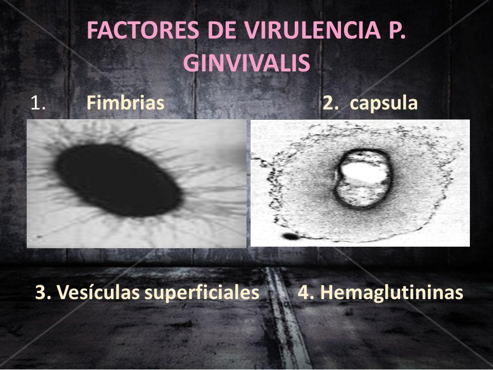 FACTORES DE VIRULENCIA P. GINVIVALIS