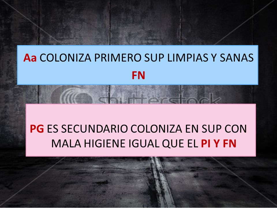 Aa COLONIZA PRIMERO SUP LIMPIAS Y SANAS FN PG ES SECUNDARIO COLONIZA EN SUP CON MALA HIGIENE IGUAL QUE EL PI Y FN