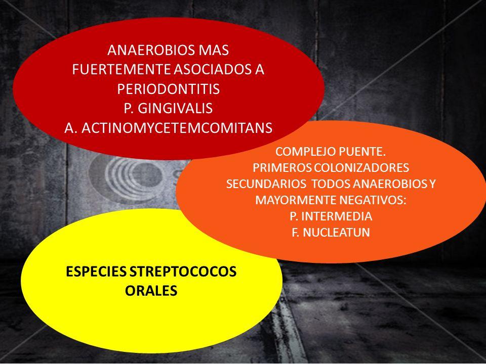 ESPECIES STREPTOCOCOS ORALES