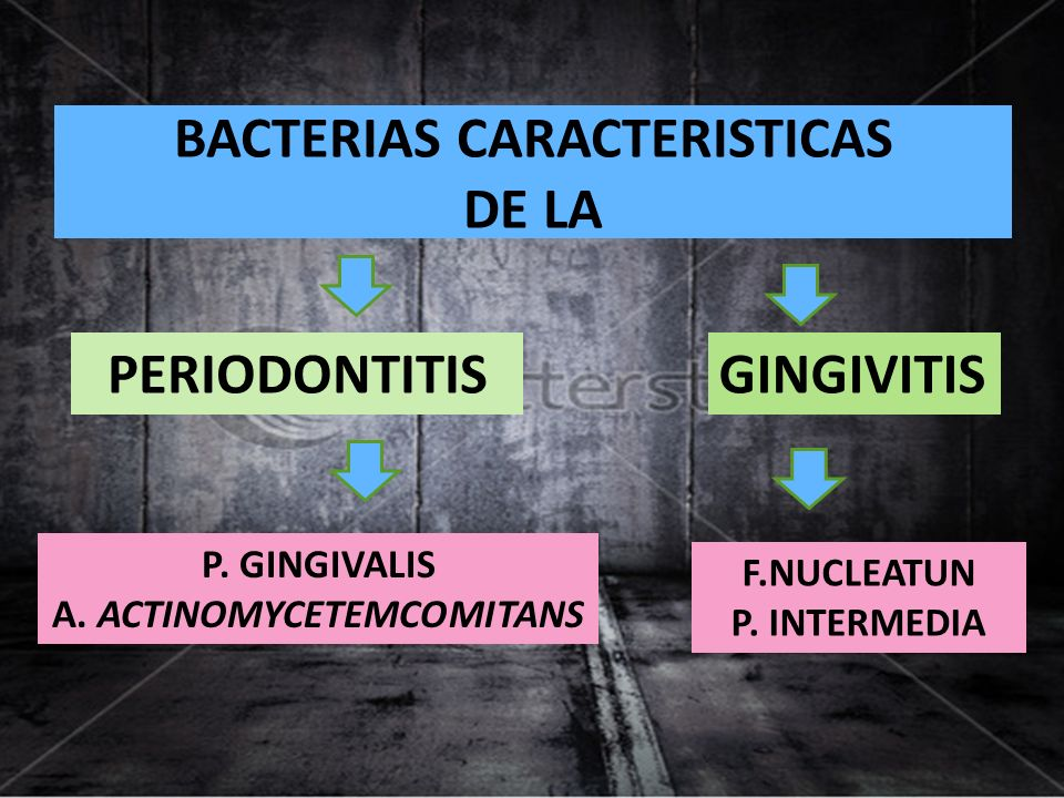 BACTERIAS CARACTERISTICAS DE LA