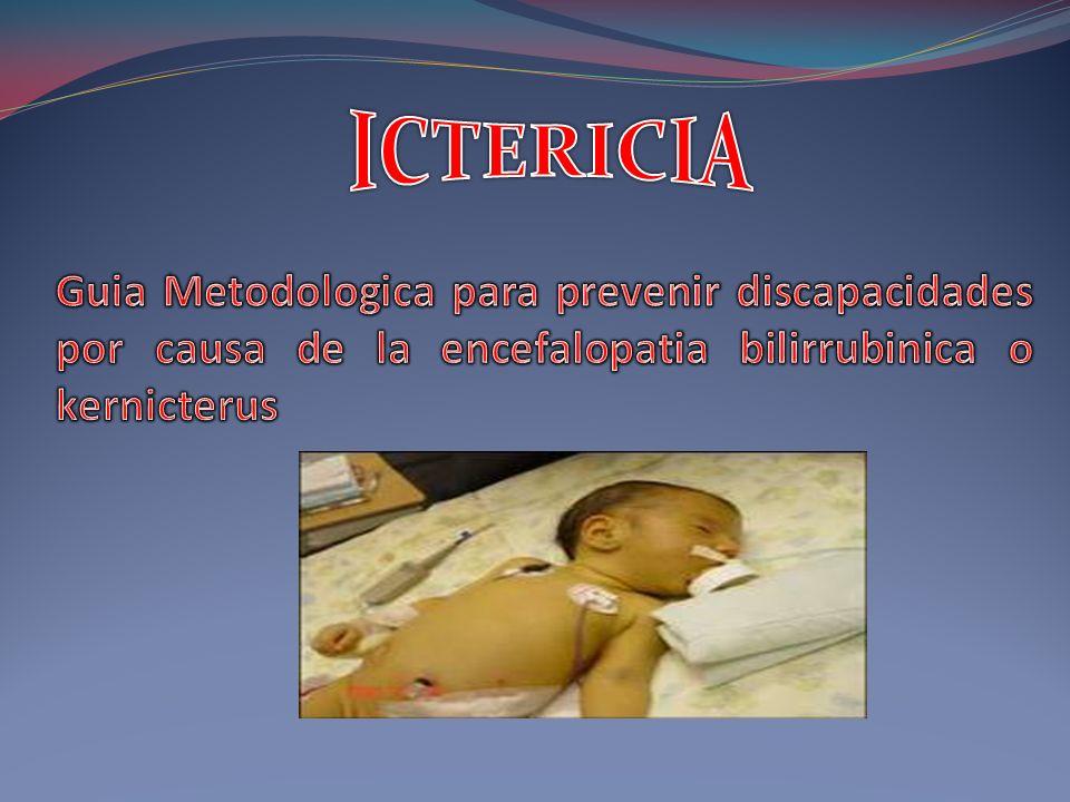 ICTERICIA Guia Metodologica para prevenir discapacidades por causa de la encefalopatia bilirrubinica o kernicterus.