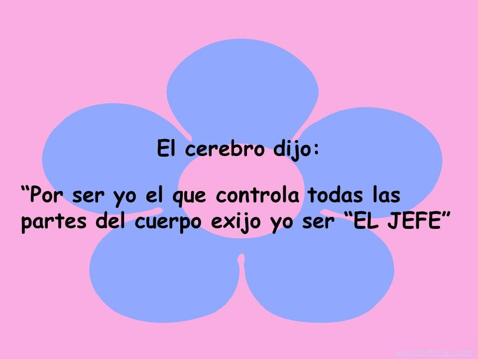 El cerebro dijo: Por ser yo el que controla todas las partes del cuerpo exijo yo ser EL JEFE www.tonterias.com.