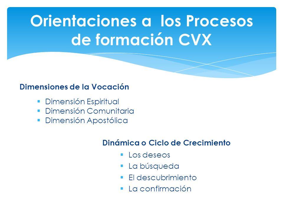 Orientaciones a los Procesos de formación CVX