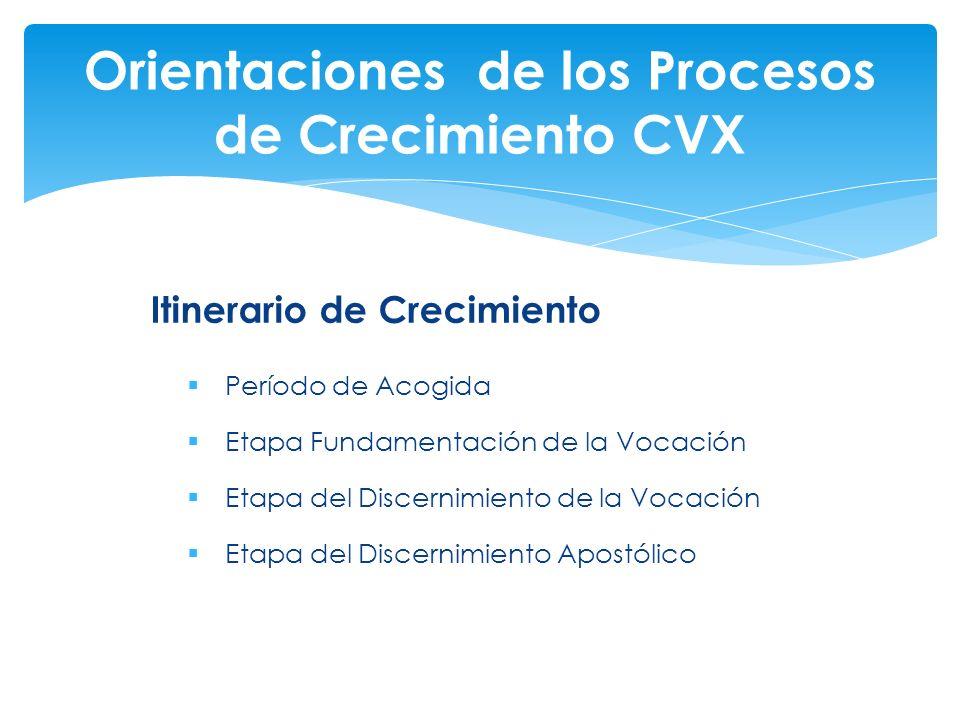 Orientaciones de los Procesos de Crecimiento CVX