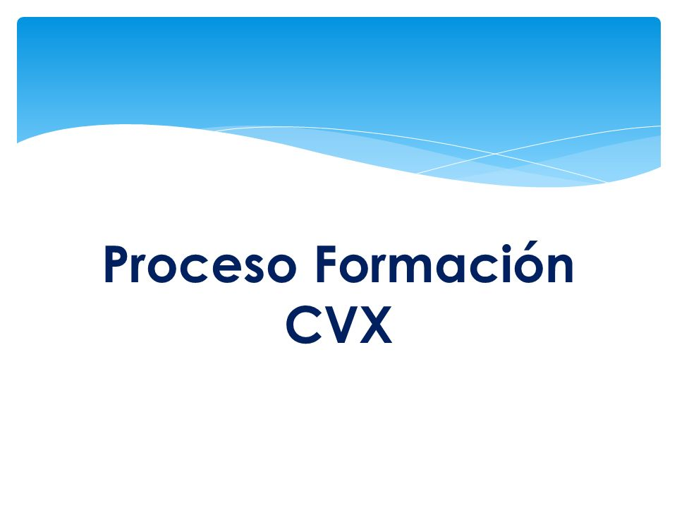 Proceso Formación CVX