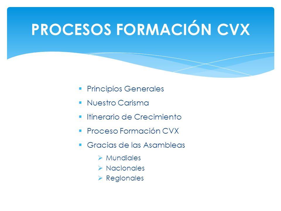 PROCESOS FORMACIÓN CVX
