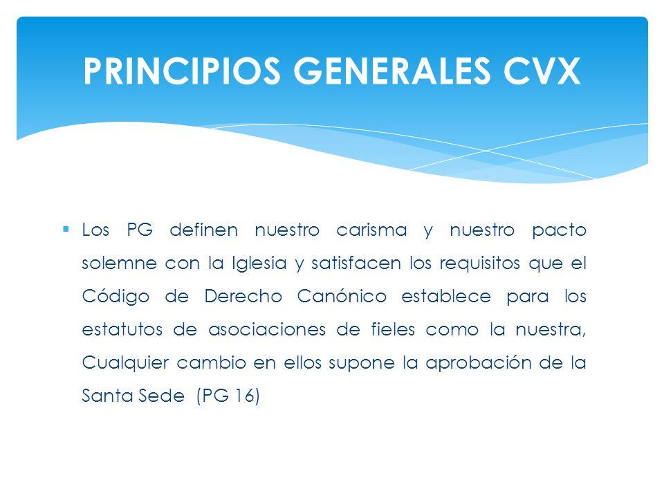 PRINCIPIOS GENERALES CVX