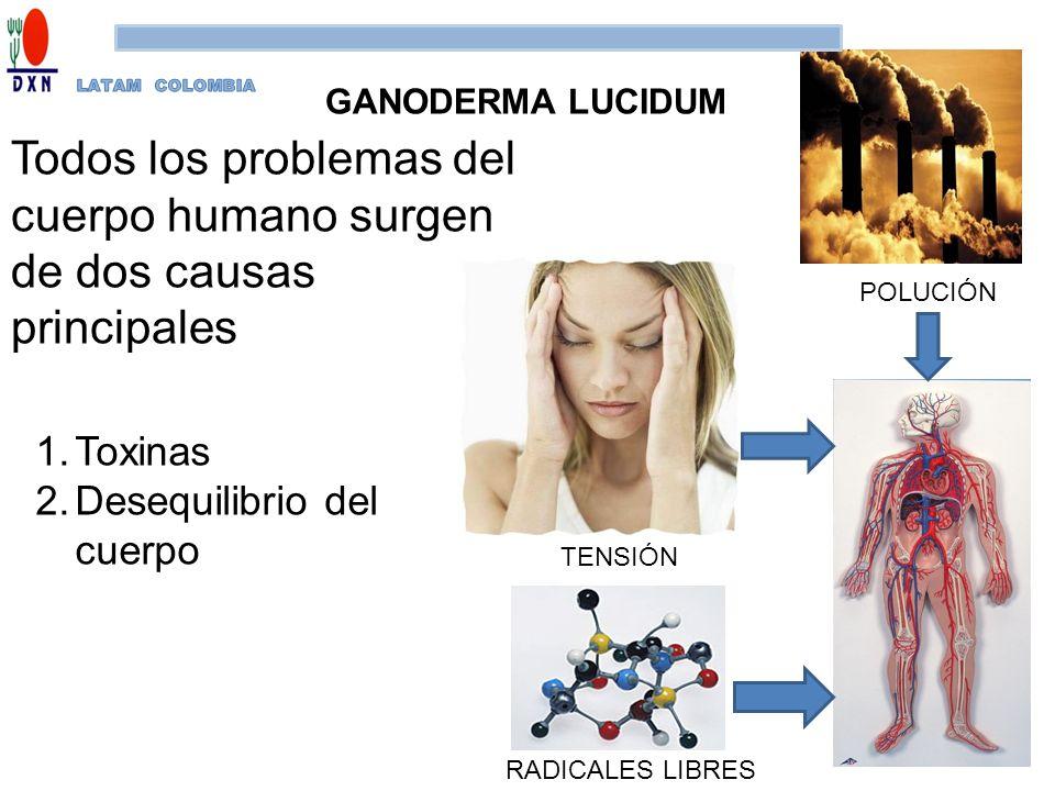 Todos los problemas del cuerpo humano surgen de dos causas principales