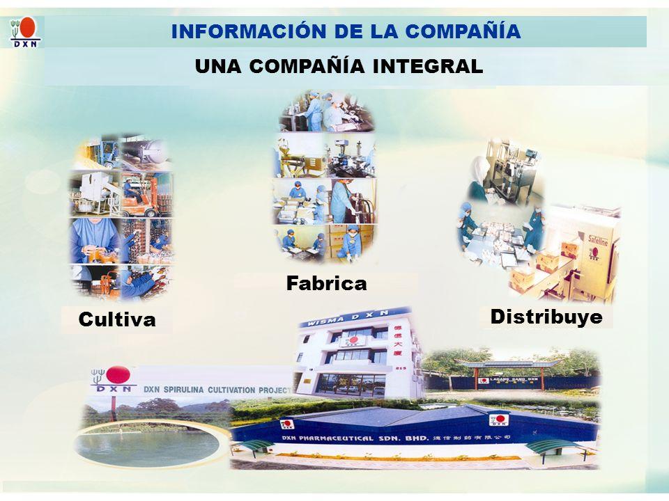 INFORMACIÓN DE LA COMPAÑÍA