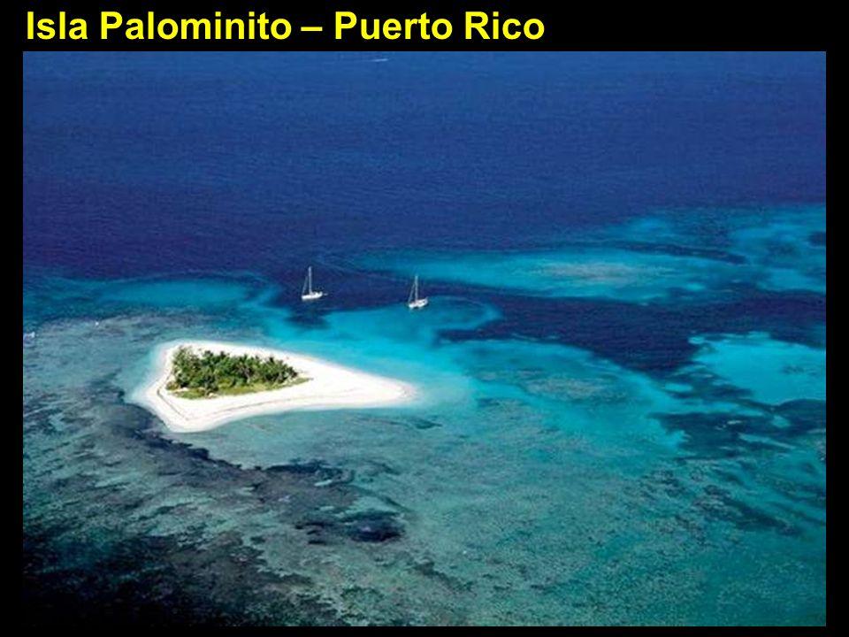 Isla Palominito – Puerto Rico