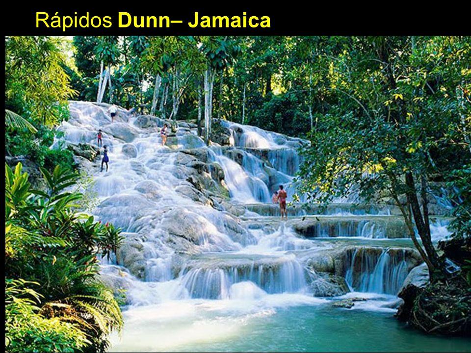 Rápidos Dunn– Jamaica