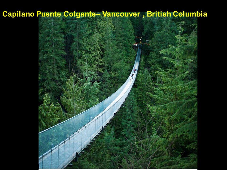 Capilano Puente Colgante– Vancouver , British Columbia
