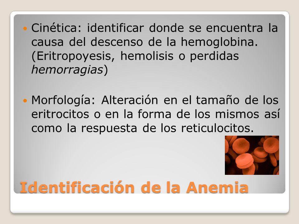 Identificación de la Anemia