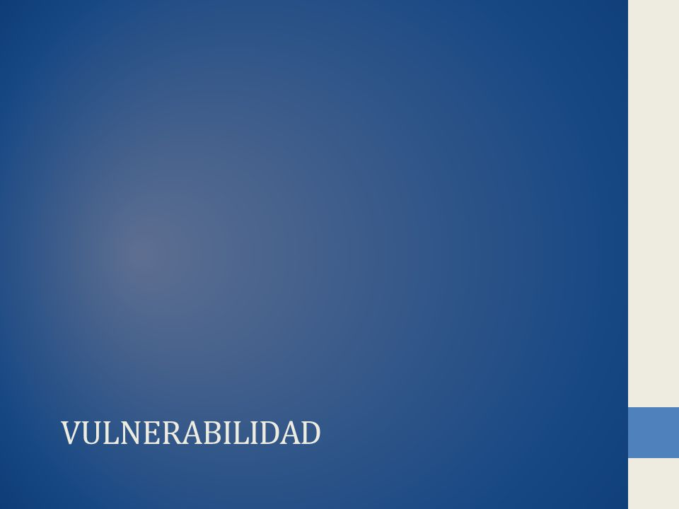 VULNERABILIDAD