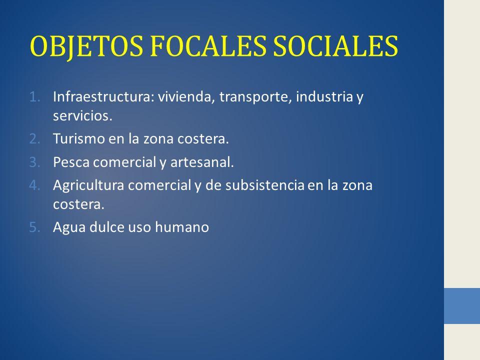 OBJETOS FOCALES SOCIALES