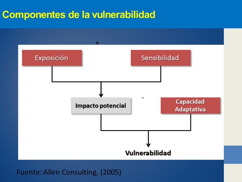 Componentes de la vulnerabilidad