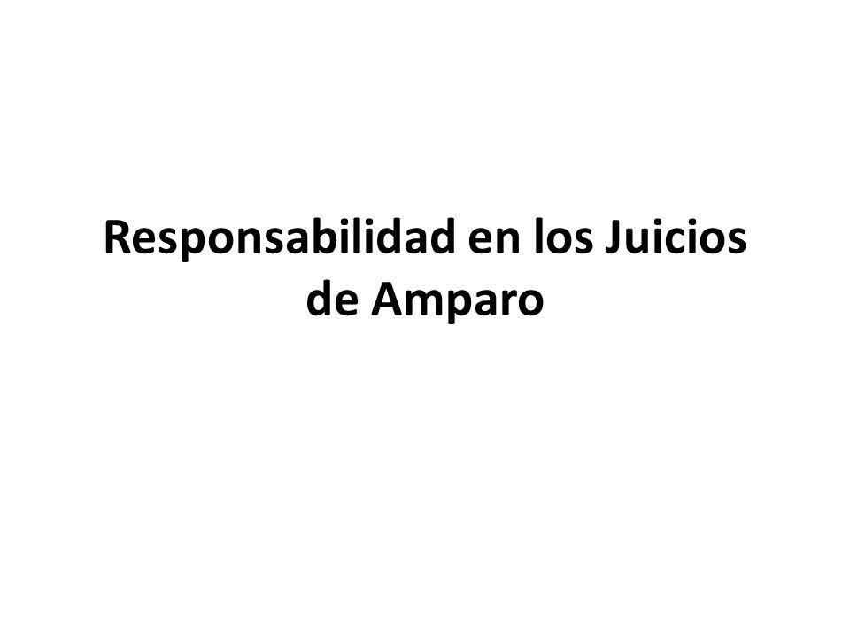 Responsabilidad en los Juicios de Amparo