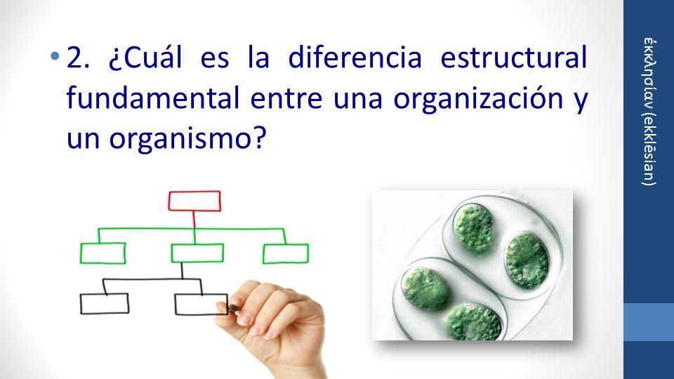 2. ¿Cuál es la diferencia estructural fundamental entre una organización y un organismo
