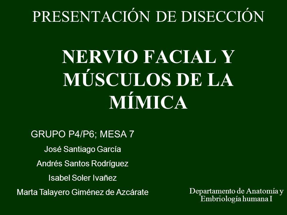PRESENTACIÓN DE DISECCIÓN NERVIO FACIAL Y MÚSCULOS DE LA MÍMICA